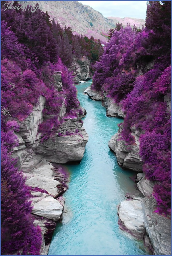 shotover river new zealand doctored New Zealand Travel Destinations