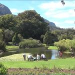 all inclusive trips to kirstenbosch national botanical garden 3 150x150 All Inclusive Trips To Kirstenbosch National Botanical Garden
