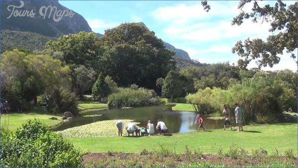 all inclusive trips to kirstenbosch national botanical garden 3 All Inclusive Trips To Kirstenbosch National Botanical Garden