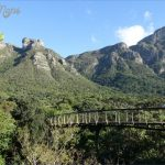 all inclusive trips to kirstenbosch national botanical garden 6 150x150 All Inclusive Trips To Kirstenbosch National Botanical Garden