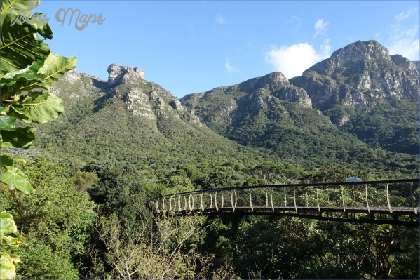 all inclusive trips to kirstenbosch national botanical garden 6 All Inclusive Trips To Kirstenbosch National Botanical Garden