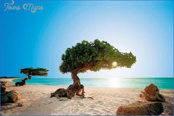 aruba 1 Aruba