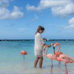 aruba 3 150x150 Aruba