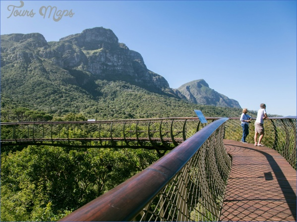 how to plan a trip to kirstenbosch national botanical garden 10 How To Plan A Trip To Kirstenbosch National Botanical Garden