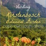how to plan a trip to kirstenbosch national botanical garden 2 150x150 How To Plan A Trip To Kirstenbosch National Botanical Garden