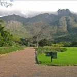 how to plan a trip to kirstenbosch national botanical garden 8 150x150 How To Plan A Trip To Kirstenbosch National Botanical Garden