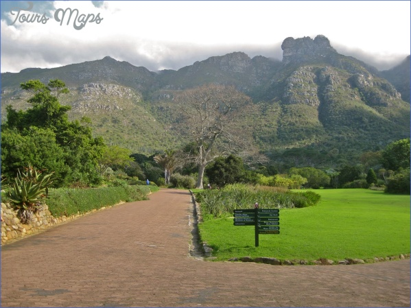 how to plan a trip to kirstenbosch national botanical garden 8 How To Plan A Trip To Kirstenbosch National Botanical Garden