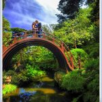 japanese tea garden san francisco 14 150x150 Japanese Tea Garden SAN FRANCISCO
