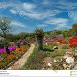 kirstenbosch national botanical garden map download  9 150x150 Kirstenbosch National Botanical Garden Map Download