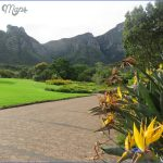 kirstenbosch national botanical garden mission trips 0 150x150 Kirstenbosch National Botanical Garden Mission Trips