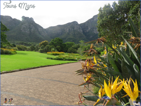 kirstenbosch national botanical garden mission trips 0 Kirstenbosch National Botanical Garden Mission Trips