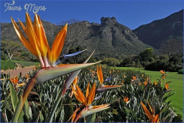 kirstenbosch national botanical garden mission trips 10 Kirstenbosch National Botanical Garden Mission Trips