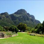 kirstenbosch national botanical garden mission trips 2 150x150 Kirstenbosch National Botanical Garden Mission Trips