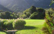 Kirstenbosch National Botanical Garden Road Trip_1.jpg