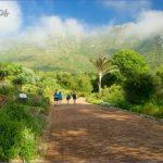 kirstenbosch national botanical garden road trip 7 150x150 Kirstenbosch National Botanical Garden Road Trip