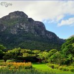 Kirstenbosch National Botanical Garden Road Trips_1.jpg