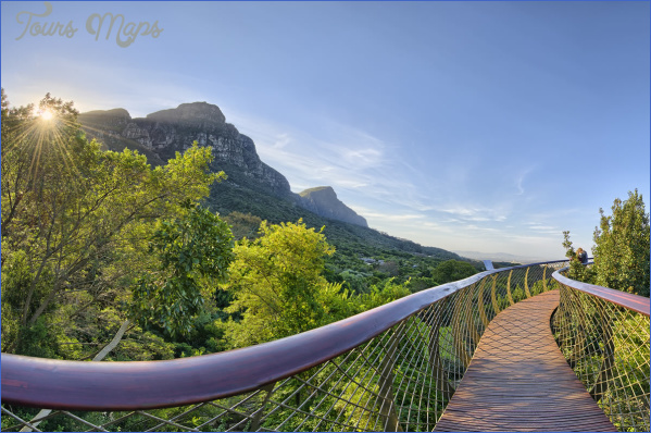 Kirstenbosch National Botanical Garden Road Trips_14.jpg