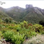 Kirstenbosch National Botanical Garden Road Trips_5.jpg
