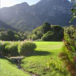 Kirstenbosch National Botanical Garden Travel_2.jpg
