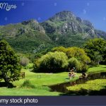 Kirstenbosch National Botanical Garden Travel_4.jpg