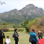Kirstenbosch National Botanical Garden Travel_6.jpg