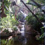 Kirstenbosch National Botanical Garden Trip Advisor_0.jpg