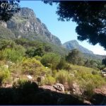 kirstenbosch national botanical garden trip advisor 1 150x150 Kirstenbosch National Botanical Garden Trip Advisor