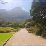 kirstenbosch national botanical garden trip advisor 7 150x150 Kirstenbosch National Botanical Garden Trip Advisor