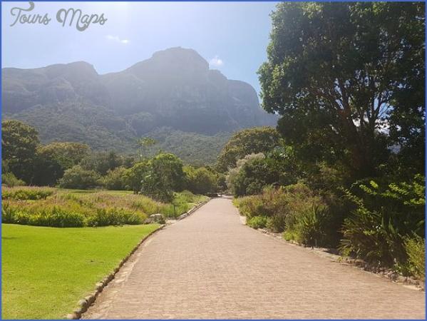 Kirstenbosch National Botanical Garden Trip Advisor_7.jpg
