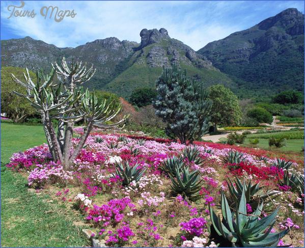kirstenbosch national botanical garden trip deals 5 Kirstenbosch National Botanical Garden Trip Deals