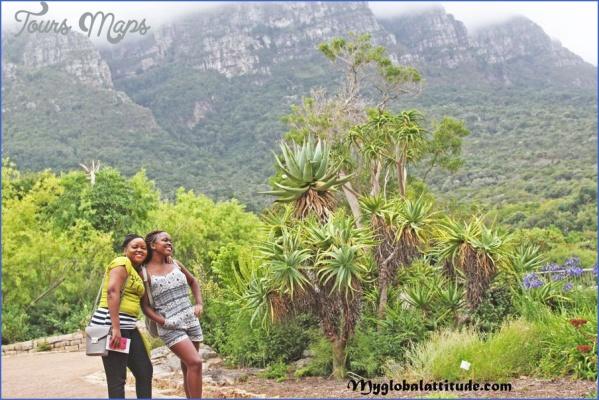 kirstenbosch national botanical garden trips 13 Kirstenbosch National Botanical Garden Trips