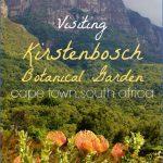 plan a trip to kirstenbosch national botanical garden 10 150x150 Plan A Trip To Kirstenbosch National Botanical Garden