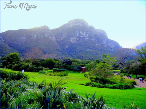 plan a trip to kirstenbosch national botanical garden 2 Plan A Trip To Kirstenbosch National Botanical Garden