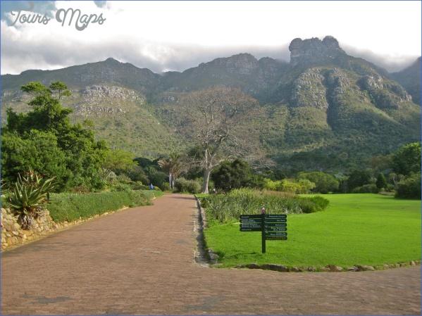 plan a trip to kirstenbosch national botanical garden 5 Plan A Trip To Kirstenbosch National Botanical Garden