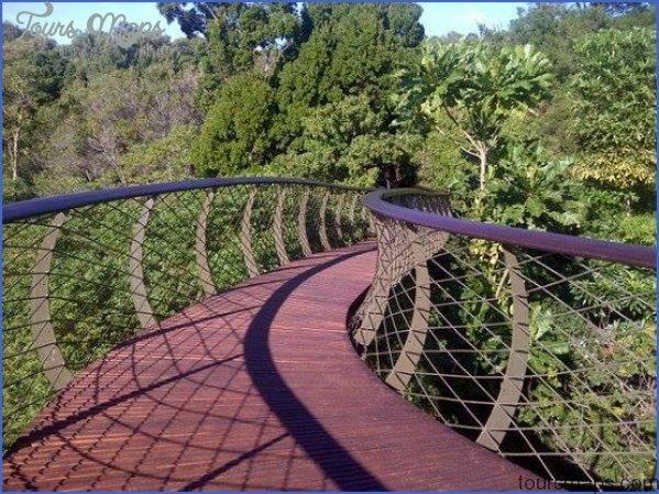 trip advisor kirstenbosch national botanical garden 1 Trip Advisor Kirstenbosch National Botanical Garden