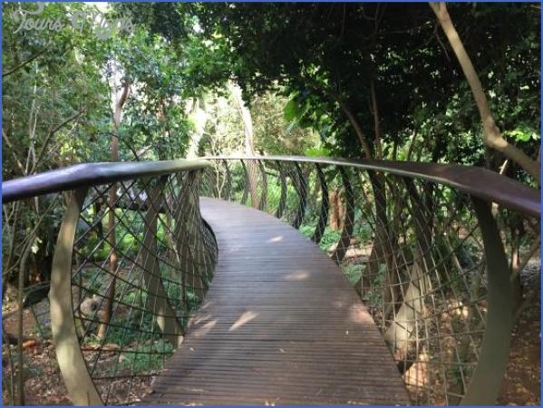 trip advisor kirstenbosch national botanical garden 9 Trip Advisor Kirstenbosch National Botanical Garden