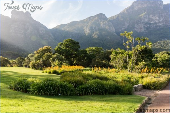 Trip To Kirstenbosch National Botanical Garden_1.jpg