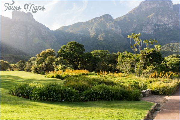 trips to kirstenbosch national botanical garden package 12 Trips To Kirstenbosch National Botanical Garden Package