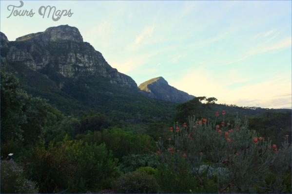 trips to kirstenbosch national botanical garden package 14 Trips To Kirstenbosch National Botanical Garden Package