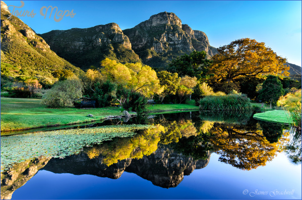 trips to kirstenbosch national botanical garden package 9 Trips To Kirstenbosch National Botanical Garden Package
