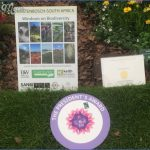 win a trip to kirstenbosch national botanical garden 13 150x150 Win A Trip To Kirstenbosch National Botanical Garden