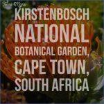 win a trip to kirstenbosch national botanical garden 14 150x150 Win A Trip To Kirstenbosch National Botanical Garden