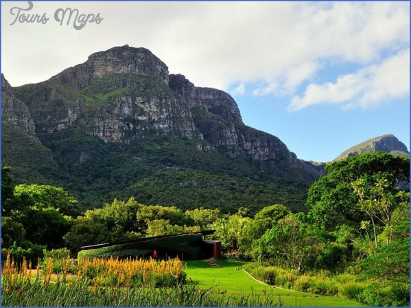 win a trip to kirstenbosch national botanical garden 4 Win A Trip To Kirstenbosch National Botanical Garden