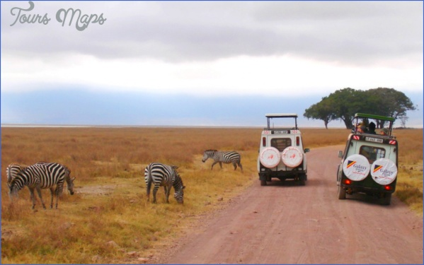 Africa Safari Travel_1.jpg