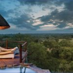 Africa Safari Travel_13.jpg