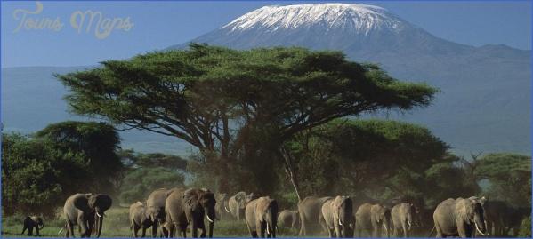Africa Safari Travel_16.jpg