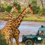 Africa Safari Travels_13.jpg