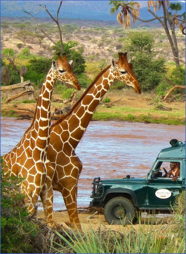 africa safari travels 13 Africa Safari Travels