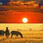 Africa Safari Travels_2.jpg