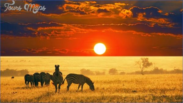 africa safari travels 2 Africa Safari Travels